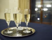 No.4 Hamilton Place Champagne Reception