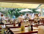 The_Hampshire_Hog_-_Beer_Garden_Image