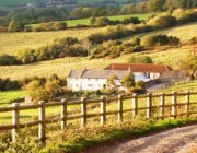 river cottage img01