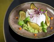 Ritorno Food Image Burrata White Wine Vinegar Marinated Green Courgette Purée Fresh Mint 1