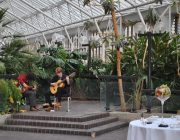 Searcys at the Barbican Conservatory Terrace Band Playing On Steps Image